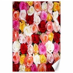 Rose Color Beautiful Flowers Canvas 12  X 18