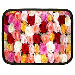 Rose Color Beautiful Flowers Netbook Case (large)