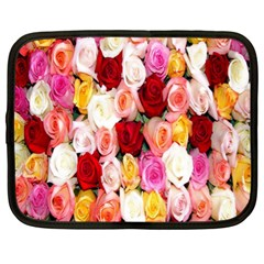 Rose Color Beautiful Flowers Netbook Case (xl)