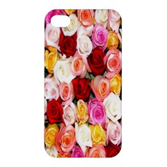Rose Color Beautiful Flowers Apple Iphone 4/4s Premium Hardshell Case