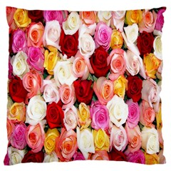 Rose Color Beautiful Flowers Large Cushion Case (two Sides)