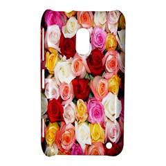 Rose Color Beautiful Flowers Nokia Lumia 620