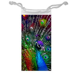3d Peacock Pattern Jewelry Bag