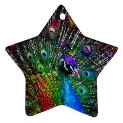 3d Peacock Pattern Star Ornament (two Sides)