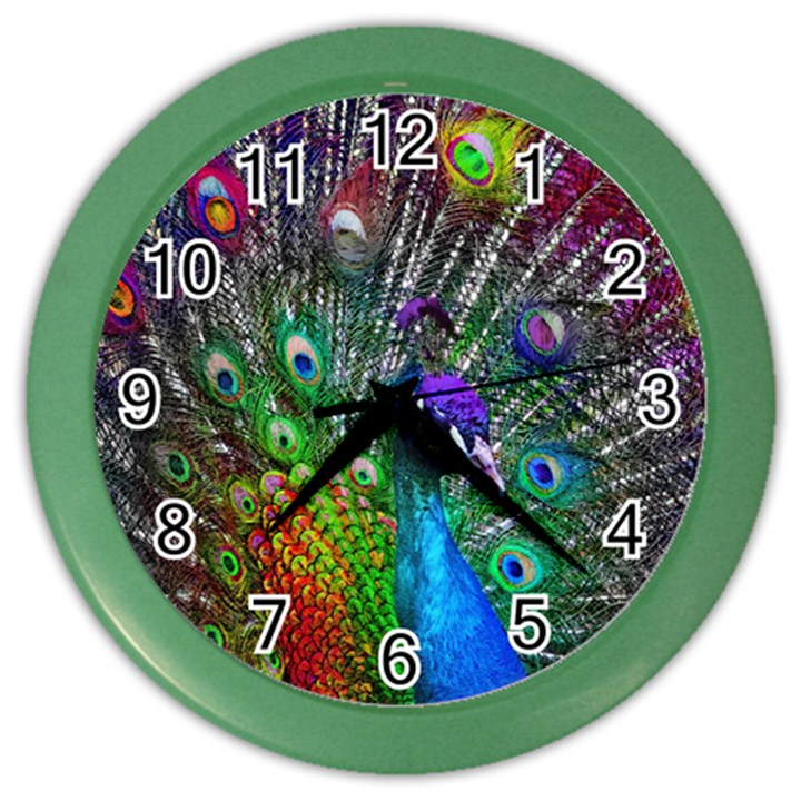 3d Peacock Pattern Color Wall Clocks