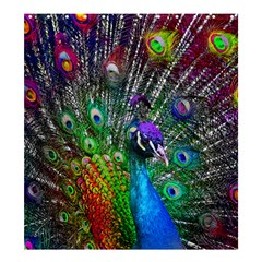 3d Peacock Pattern Shower Curtain 66  X 72  (large)