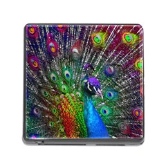 3d Peacock Pattern Memory Card Reader (square)