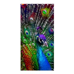 3d Peacock Pattern Shower Curtain 36  X 72  (stall)
