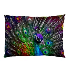 3d Peacock Pattern Pillow Case (Two Sides)