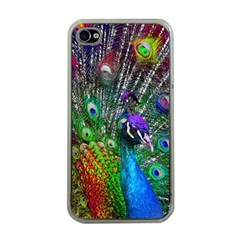 3d Peacock Pattern Apple iPhone 4 Case (Clear)