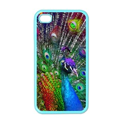 3d Peacock Pattern Apple Iphone 4 Case (color)