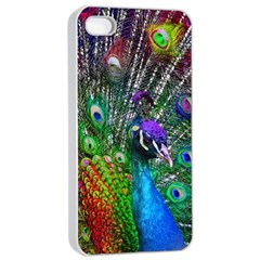 3d Peacock Pattern Apple iPhone 4/4s Seamless Case (White)