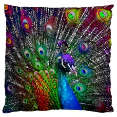 3d Peacock Pattern Large Cushion Case (two Sides)