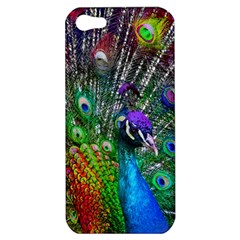 3d Peacock Pattern Apple Iphone 5 Hardshell Case