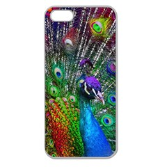 3d Peacock Pattern Apple Seamless iPhone 5 Case (Clear)