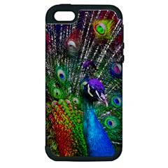 3d Peacock Pattern Apple Iphone 5 Hardshell Case (pc+silicone)