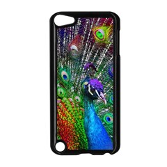 3d Peacock Pattern Apple Ipod Touch 5 Case (black)