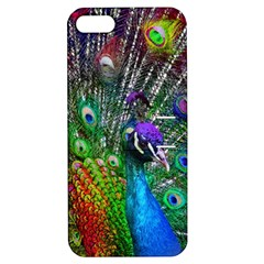 3d Peacock Pattern Apple Iphone 5 Hardshell Case With Stand