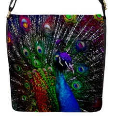 3d Peacock Pattern Flap Messenger Bag (s)