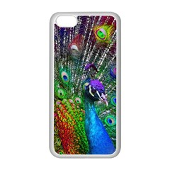3d Peacock Pattern Apple iPhone 5C Seamless Case (White)