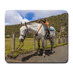 White Horse Tied Up at Cotopaxi National Park Ecuador Large Mousepads