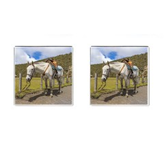 White Horse Tied Up at Cotopaxi National Park Ecuador Cufflinks (Square)