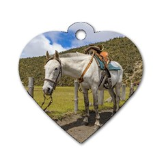 White Horse Tied Up at Cotopaxi National Park Ecuador Dog Tag Heart (Two Sides)