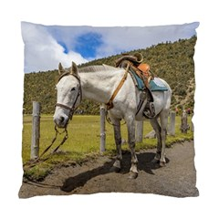 White Horse Tied Up at Cotopaxi National Park Ecuador Standard Cushion Case (Two Sides)