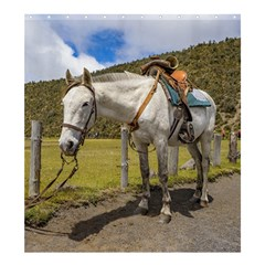 White Horse Tied Up At Cotopaxi National Park Ecuador Shower Curtain 66  X 72  (large)