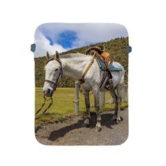 White Horse Tied Up at Cotopaxi National Park Ecuador Apple iPad 2/3/4 Protective Soft Cases