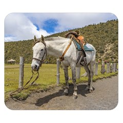 White Horse Tied Up at Cotopaxi National Park Ecuador Double Sided Flano Blanket (Small)