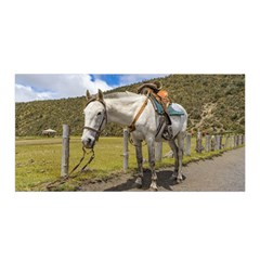 White Horse Tied Up at Cotopaxi National Park Ecuador Satin Wrap