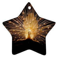3d Beautiful Peacock Ornament (star)