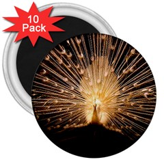 3d Beautiful Peacock 3  Magnets (10 Pack)