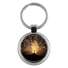 3d Beautiful Peacock Key Chains (round)