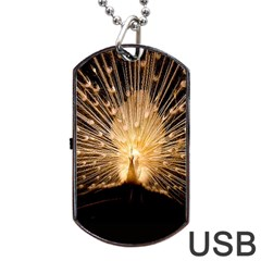 3d Beautiful Peacock Dog Tag Usb Flash (one Side)