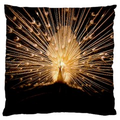 3d Beautiful Peacock Large Cushion Case (One Side)