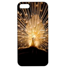 3d Beautiful Peacock Apple Iphone 5 Hardshell Case With Stand