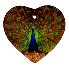 3d Peacock Bird Ornament (heart)