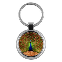 3d Peacock Bird Key Chains (round)