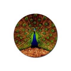 3d Peacock Bird Rubber Round Coaster (4 Pack)