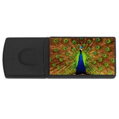 3d Peacock Bird USB Flash Drive Rectangular (2 GB)