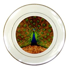 3d Peacock Bird Porcelain Plates