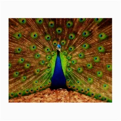 3d Peacock Bird Small Glasses Cloth (2-Side)