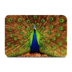 3d Peacock Bird Plate Mats