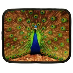 3d Peacock Bird Netbook Case (Large)
