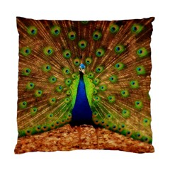 3d Peacock Bird Standard Cushion Case (two Sides)