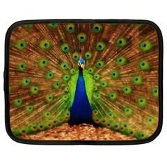 3d Peacock Bird Netbook Case (xl)