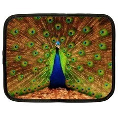 3d Peacock Bird Netbook Case (xxl)