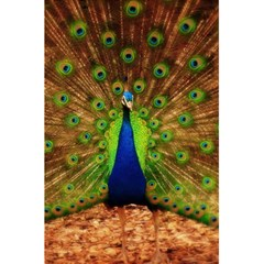 3d Peacock Bird 5 5  X 8 5  Notebooks